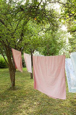 On the washing line - p454m739665 by Lubitz + Dorner