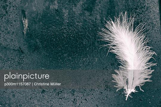 p300m1157087 von Christine Müller