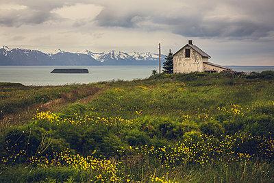 Abandoned house, Iceland - p1084m986781 by Operation XZ