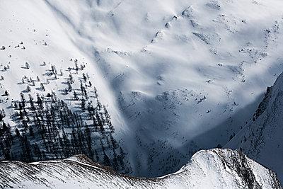 Austria, Tyrol, Ischgl, trees in winter landscape - p300m1068943f by Bela Raba