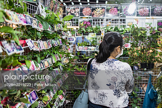 Thailand, Bangkok, Woman in garden center - p728m2219723 by Peter Nitsch