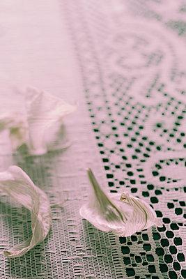 Blütenblätter auf einer Spitzentischdecke - p1255m2015617 von Kati Kalkamo