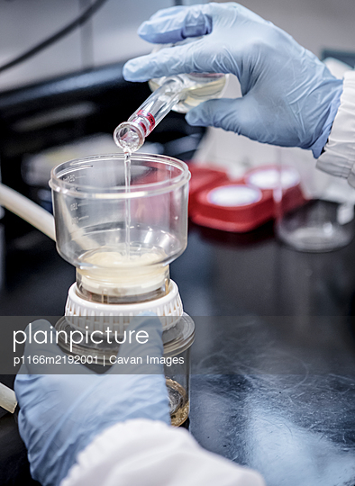 Bioscience research in a laboratory - p1166m2192001 by Cavan Images