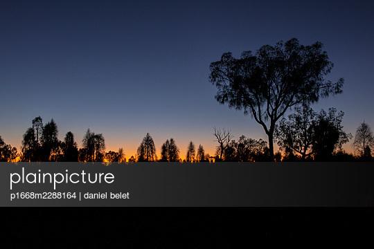 Evening mood - p1668m2288164 by daniel belet