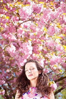 Frühlingsrausch - p045m1149700 von Jasmin Sander