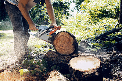 Low section of man cutting log with chainsaw - p1166m1174414 by Cavan Images