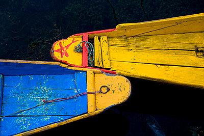 Colorful boats, Srinagar, Dal Lake, Kashmir, India   - p4428316f by Design Pics