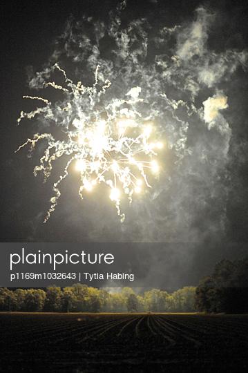 Feuerwerk - p1169m1032643 von Tytia Habing