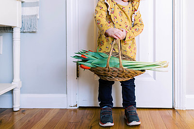 Little two year old girl holding basket full of tulips. - p1166m2162805 by Cavan Images