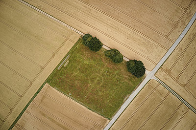 Fußballfeld im Getreidefeld - p1294m2231506 von Sabine Bungert