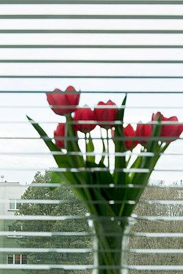 Einsamkeit 2020 - p1599m2173714 von Sandra Bergemann