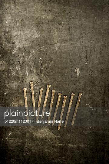Nine rusty nails - p1228m1123017 by Benjamin Harte