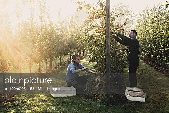 10.10.18 - p1100m2061153 by Mint Images