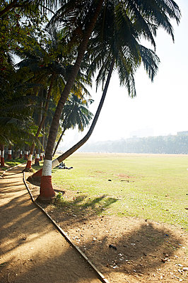 Wiese, Mumbai - p1259m1109505 von J.-P. Westermann