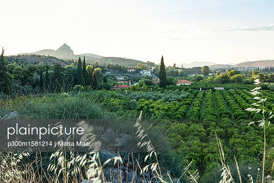 Greece, Peloponnese, Arcadia, ancient Asine - p300m1581214 von Maria Maar