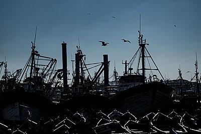 Fischerhafen von Essouira - p1243m1516485 von Archer