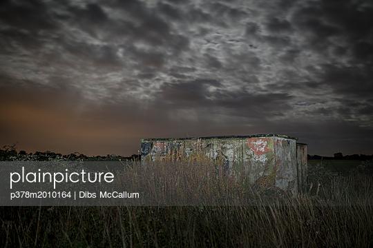 p378m2010164 von Dibs McCallum