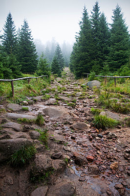 Stony path - p171m854022 by Rolau