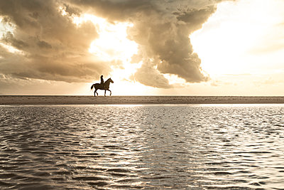 Spain, Tarifa, silhouette of woman riding horse on the beach at sunset - p300m2068606 by Sebastian Kanzler