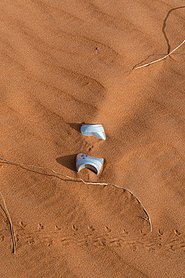Beverage can in sand dune in Sahara Desert, Merzouga, Morocco - p300m2169804 by VITTA GALLERY