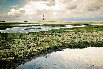 Nature reserve on Wangerooge with lighthouse - p416m784660 by Thomas Schaefer