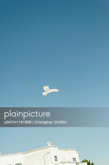 Algarve - p947m1161808 von Cristopher Civitillo