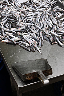 Sardines - p1048m1040907 by  Mark Wagner