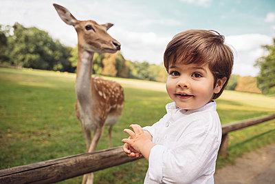 Portrait of happy toddler in a wild park with roe deer in the background - p300m2030004 by Mareen Fischinger
