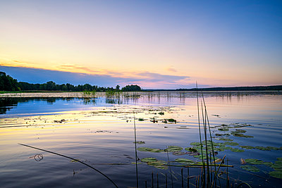 Sunset over Juglas lake, Latvian nature, Riga, Latvia - p871m2143252 by Toms Auzins
