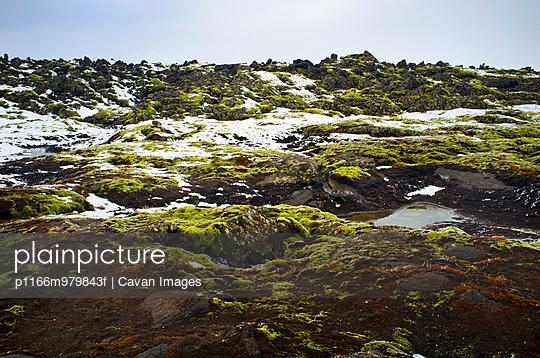 p1166m979843f von Cavan Images