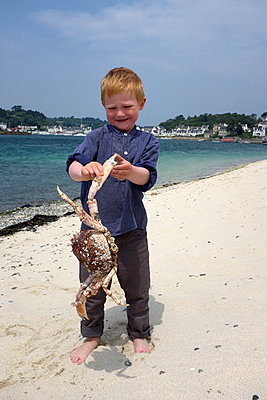 Junge findet Meeresspinne - p116m1586218 von Gianna Schade