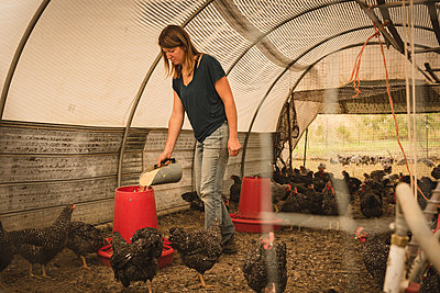 Female farmer feeding the hens in henhouse - p1315m1518497 by Wavebreak