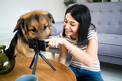 Smiling woman showing smart phone to dog at table in living room - p300m2265273 by Giorgio Fochesato