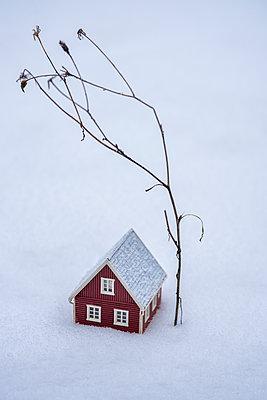 Miniature house  - p971m2230373 by Reilika Landen