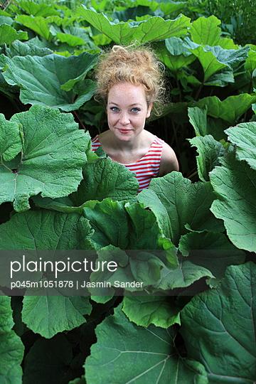 Leaf vein - p045m1051878 by Jasmin Sander