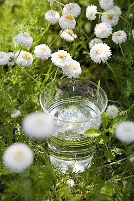 Glas Wasser - p7810002 von Angela Franke
