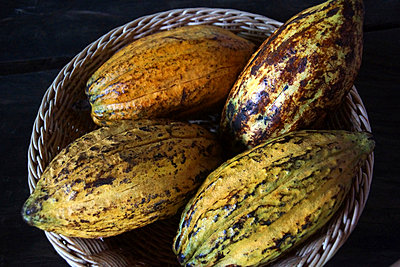 Cocoa beans - p162m1025636 by Beate Bussenius