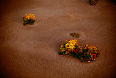 Field with trees elevated view - p5751948f by Hasse Schroder
