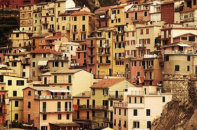 Hill of houses - p1072m830387 by Joe Eitzen