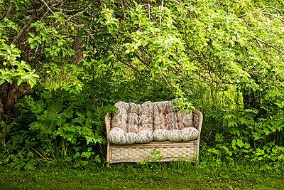 Sofa under apple tree - p1418m2195611 by Jan Håkan Dahlström