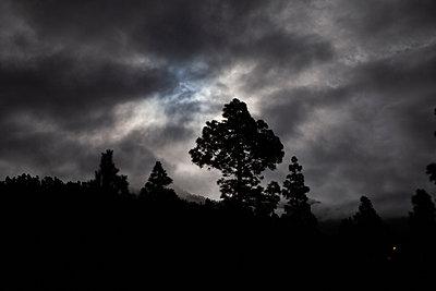 Mystic Night  - p1095m2132832 by nika