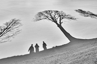 Schatten im Schnee - p1299m1516685 von Boris Schmalenberger