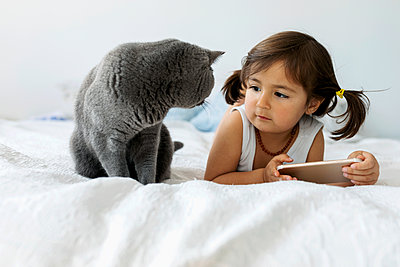 Portrait of little girl lying on bed with smartphone looking at grey British shorthair - p300m2180722 by Valentina Barreto