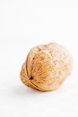 Studio shot of walnut - p312m1551343 by Scandinav Images