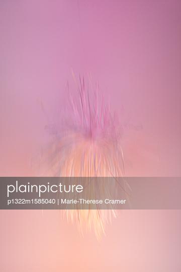 Filigrane Malerei vor rosa Hintergrund - p1322m1585040 von Marie-Therese Cramer