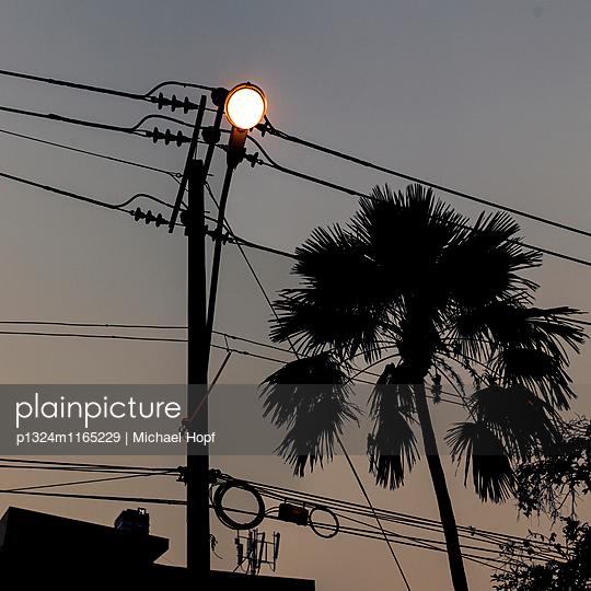 Stromleitungen und eine Palme bei Nacht - p1324m1165229 von michaelhopf