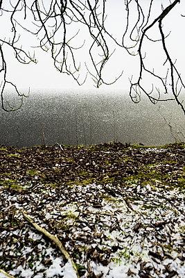 Winter scenery - p075m2071205 by Lukasz Chrobok