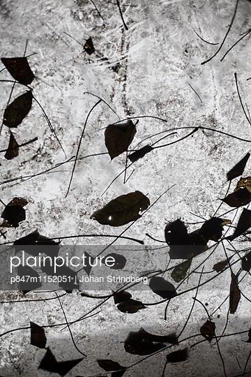 p847m1152051 von Johan Strindberg