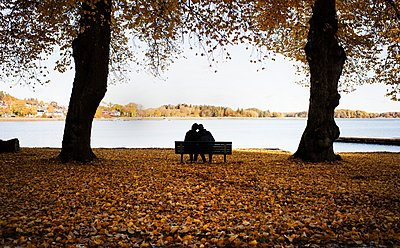 Couple sitting on a bench surrounded by fall leaves enjoying scenery - p1166m2137509 by Cavan Images