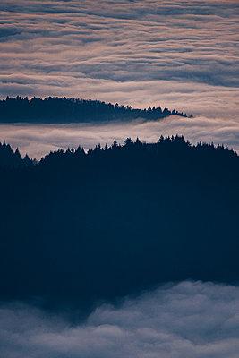 Sonnenaufgang über den Wolken im Schwarzwald - p1455m2204443 von Ingmar Wein
